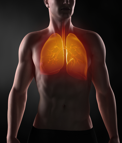 Previous Respiratory Diseases Are Risk Factor For Lung Cancer