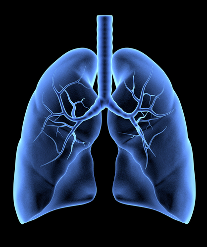 Medicare To Cover Lung Cancer Screening Test